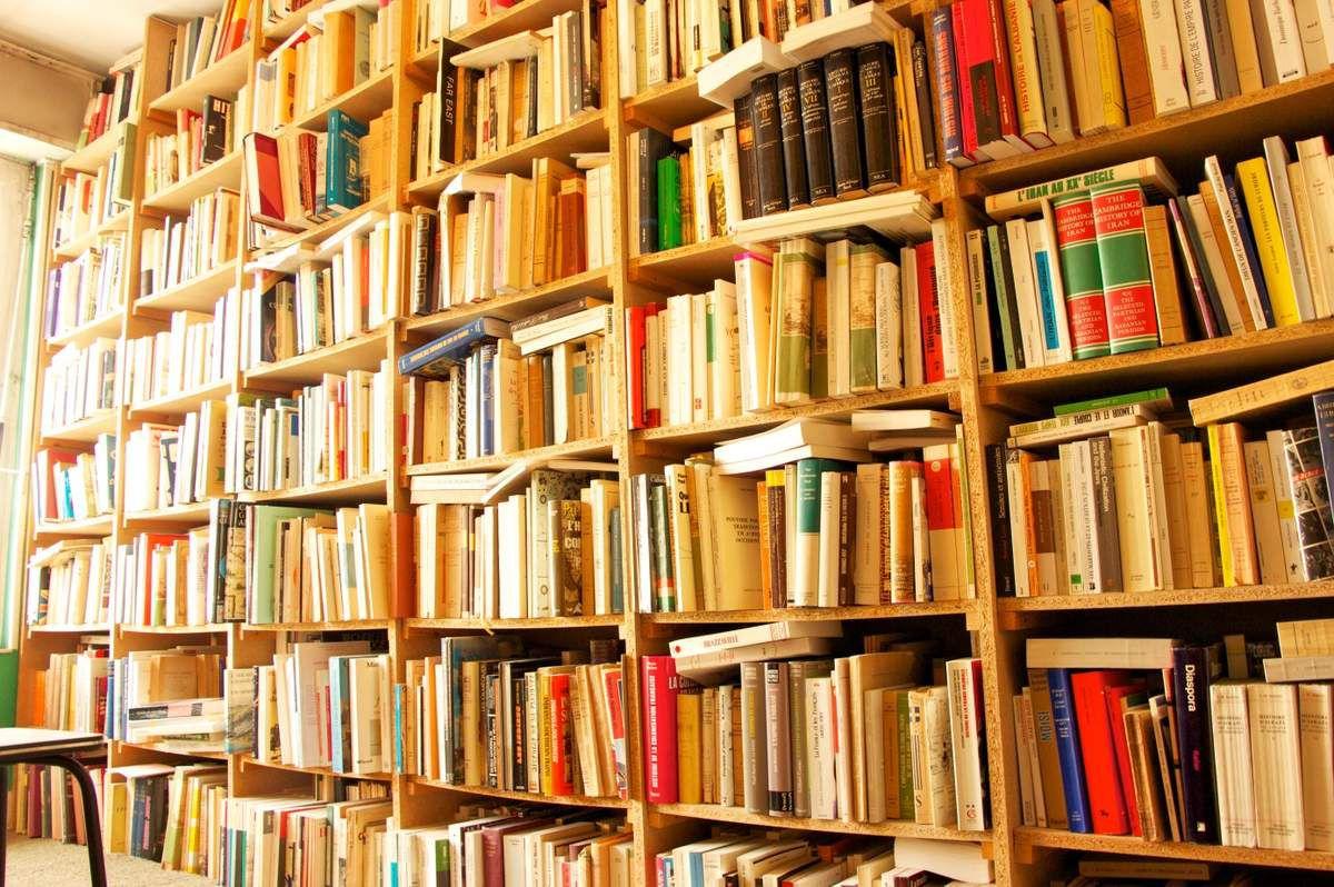 Littérature/Bibliothèques et algorithmes