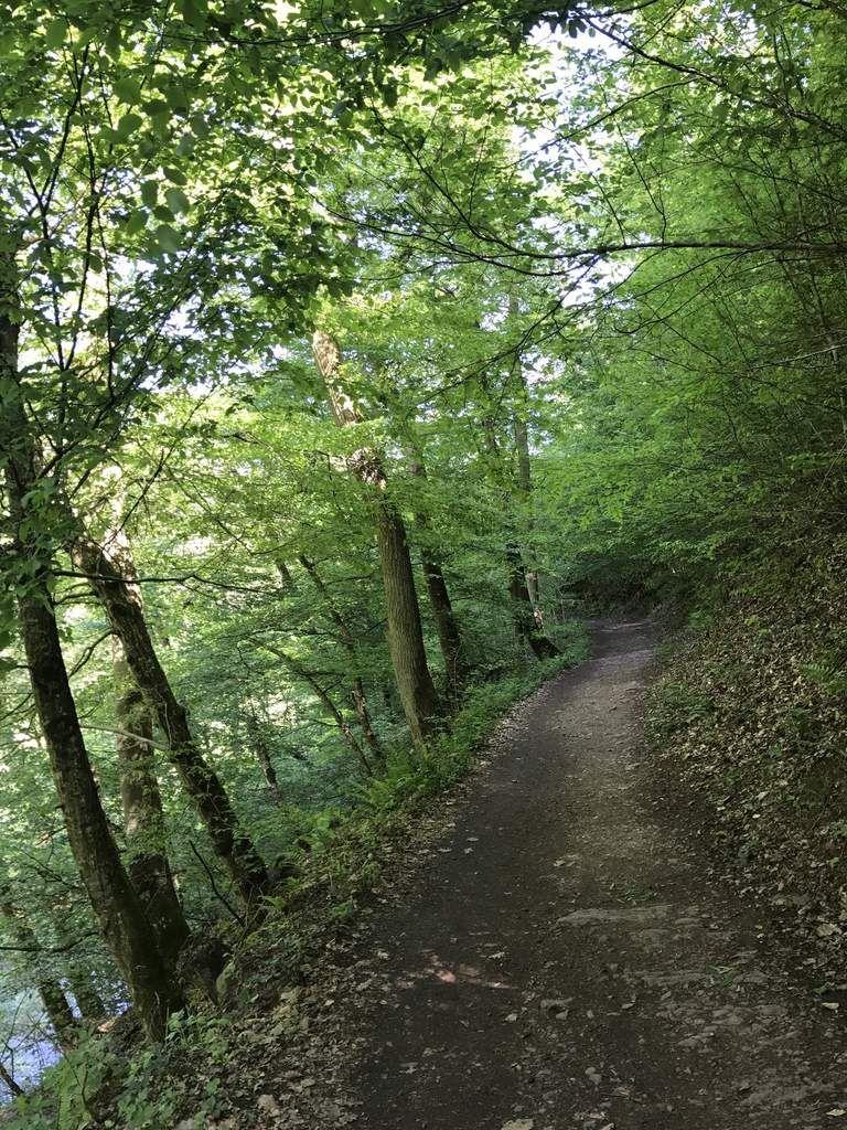 2017 Mai - Le Luxembourg, les Ardennes et la vallée de la Moselle