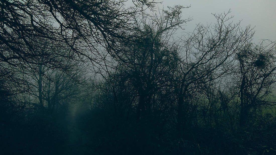 Sentiments de saisons .hiver.02