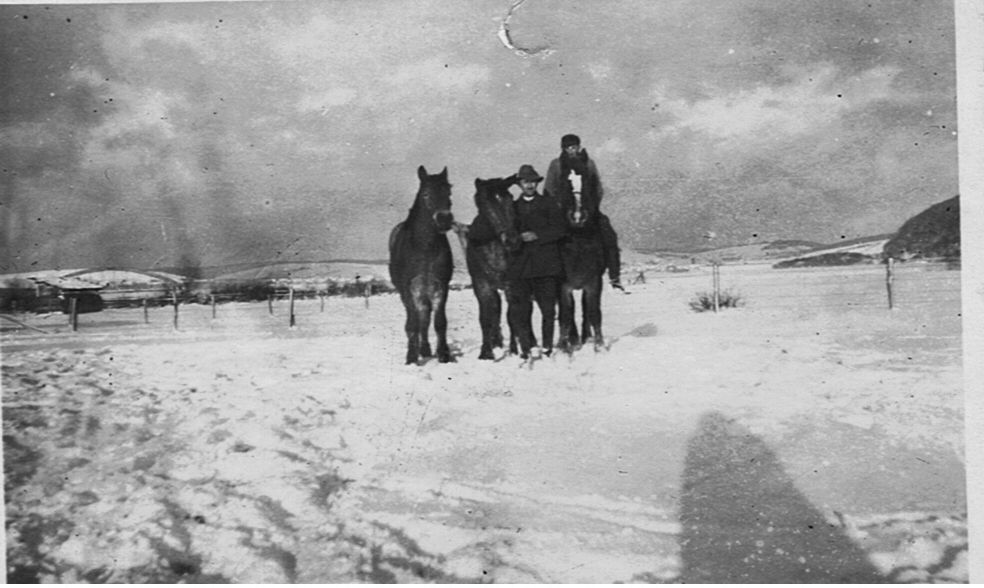 Les trois chevaux de la ferme de Blankenheim. Karl Claus, le patron, est debout. Théo est à cheval.