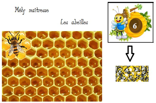 Dénombrement des abeilles