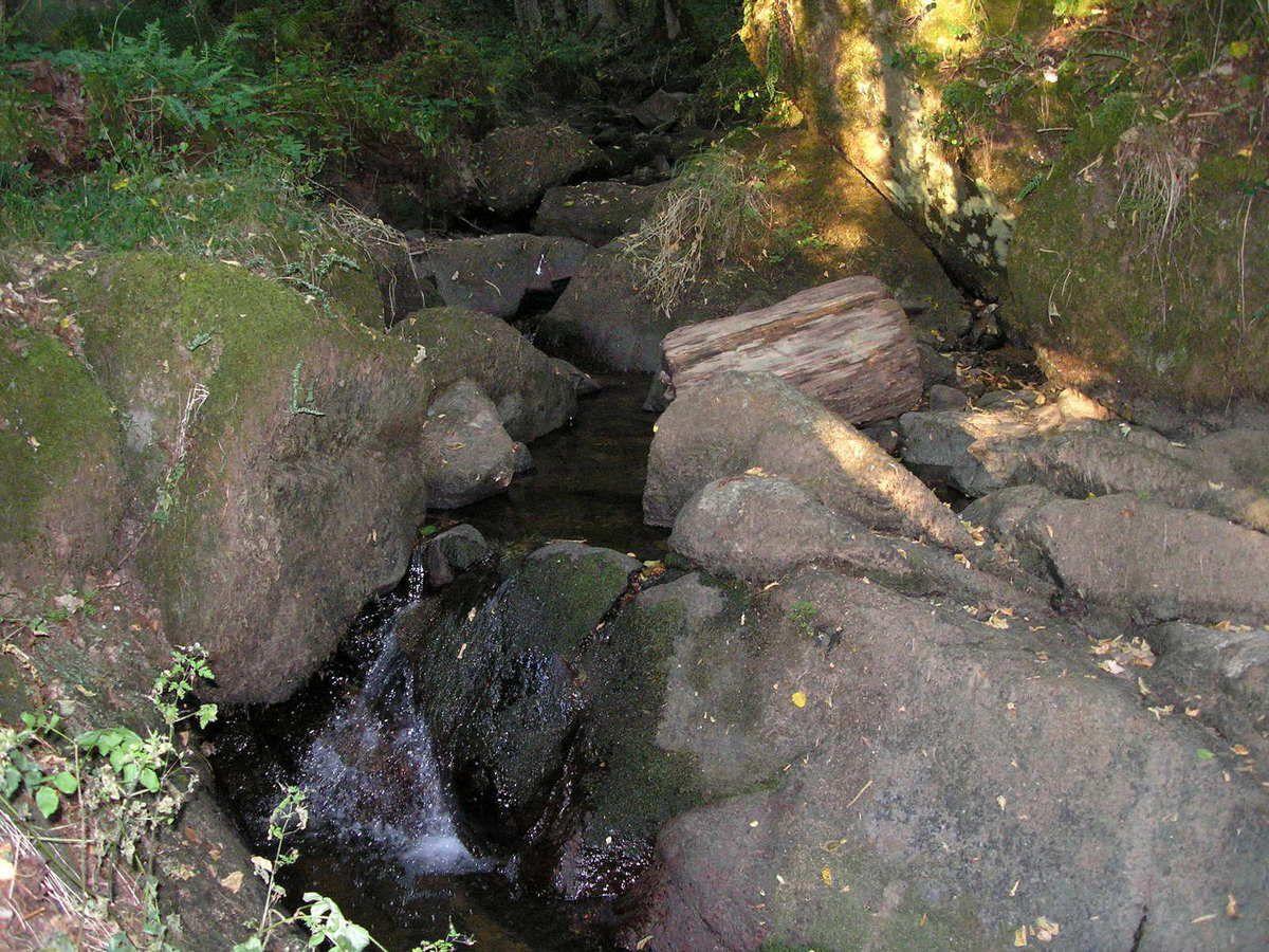 """Sentier ombragé qui grimpe le long de l'Ambène dans les châtaigniers pour nous mener tout d'abord vers une table d'orientation qui domine le village d'Enval et la plaine de la Limagne. On surplombe ensuite la cascade du bout du monde évoqué par MAUPASSANT dans son roman """"MONT ORIOL"""" écrit en 1887. Le sentier serpente ensuite en sous bois dans la vallée de l'Ambène et ses cascades."""