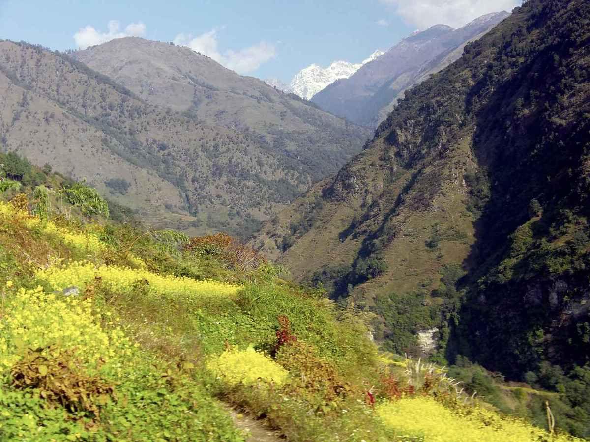 TREK DU MANASLU - NEPAL -  4ème Etape (Laprak - Kholabensi)