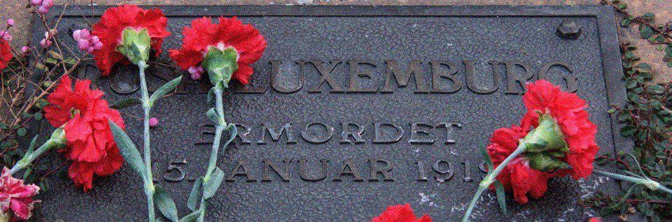 Rosa Luxemburg et le socialisme démocratique