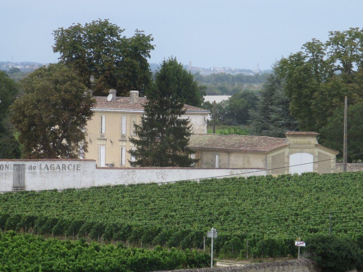 L'estuaire,les chevaux, les châteaux, les vignobles...de très belles vues...