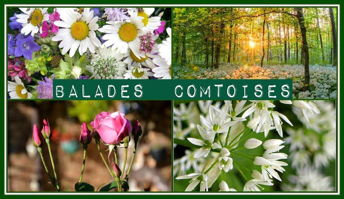 Balades comtoises