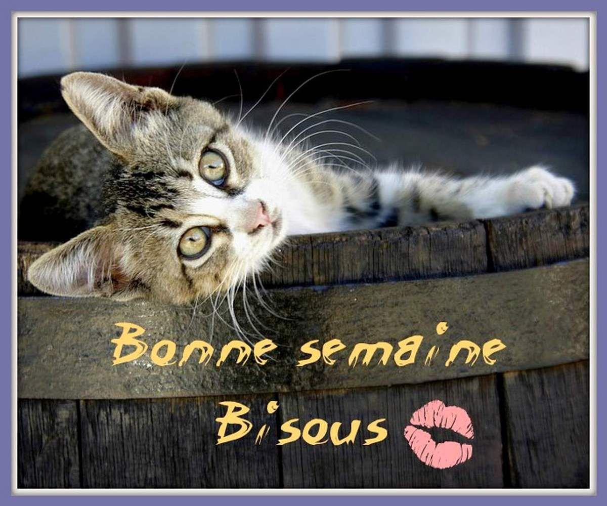 """Carte """"Bonne semaine"""" - Balades comtoises"""