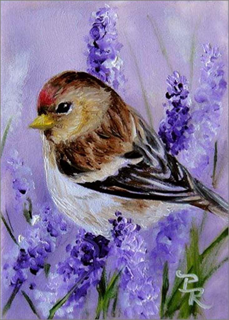 Oiseaux en peinture - Paulie Rollins