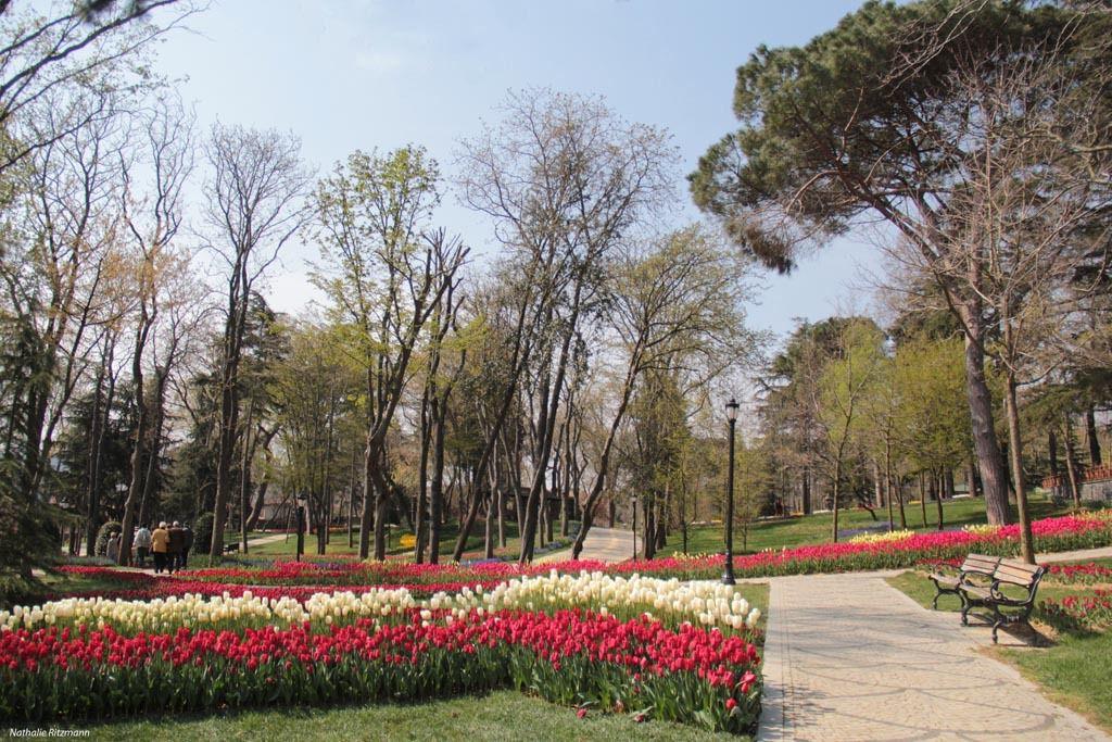 La 14ème édition du Festival de la tulipe d'Istanbul a démarré !