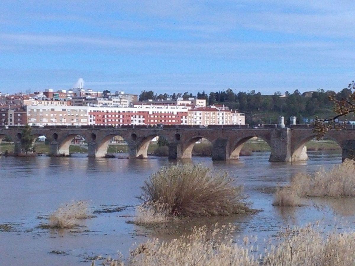 Puente de Palmas,