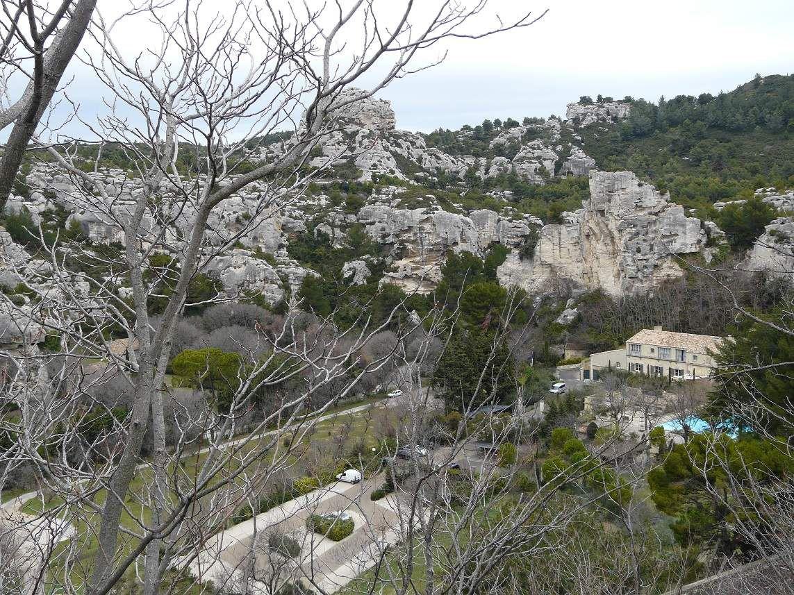 Les cigales en Provence
