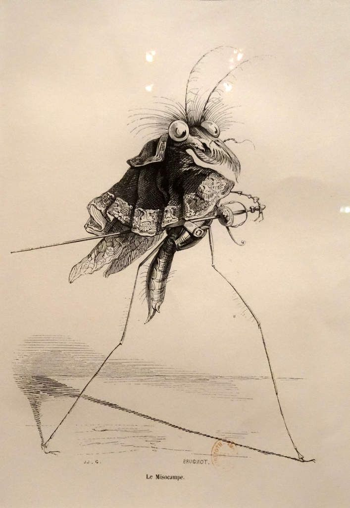 J.J.Granville (1803-1847) - Le Misocampe - Scène de la vie privée et publique des animaux - 1842 - Gravure sur bois de Louis Brugnot
