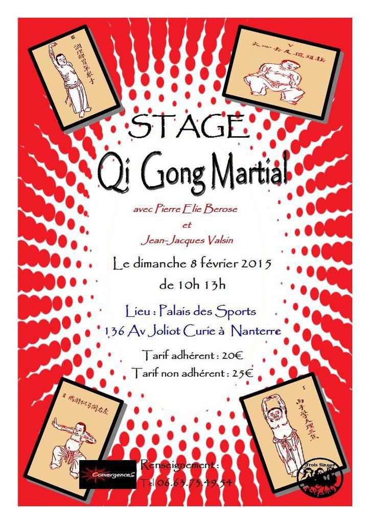Stage de Qi Gong Martial le 8 février 2015