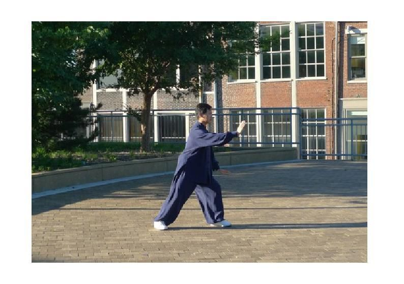 Maître Yang Jun démonstration solo routine (tao lu)