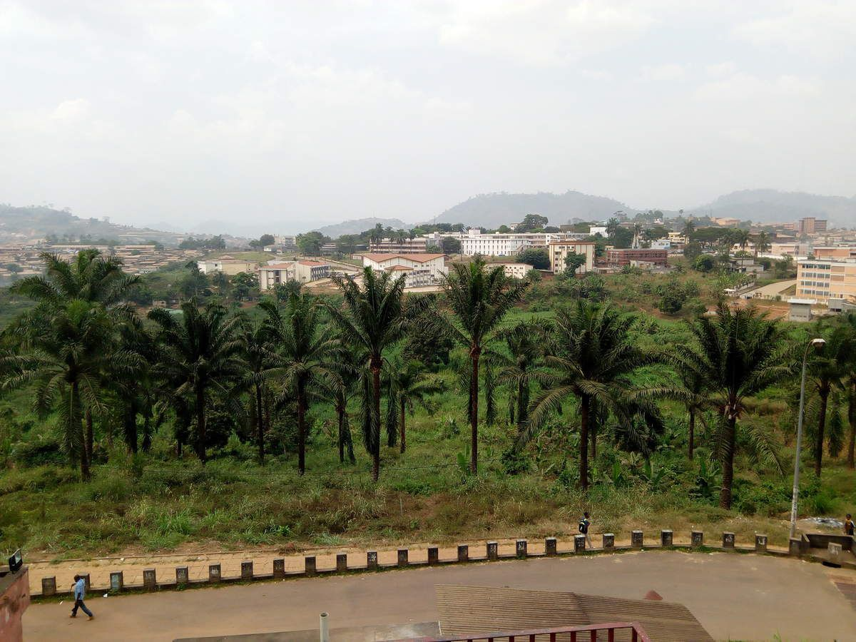 University of Yaounde 1