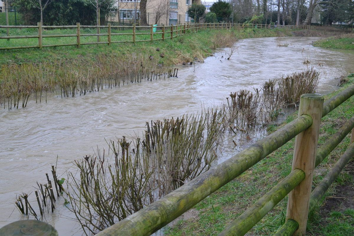 Le niveau de l'Yvette dans Longjumeau.