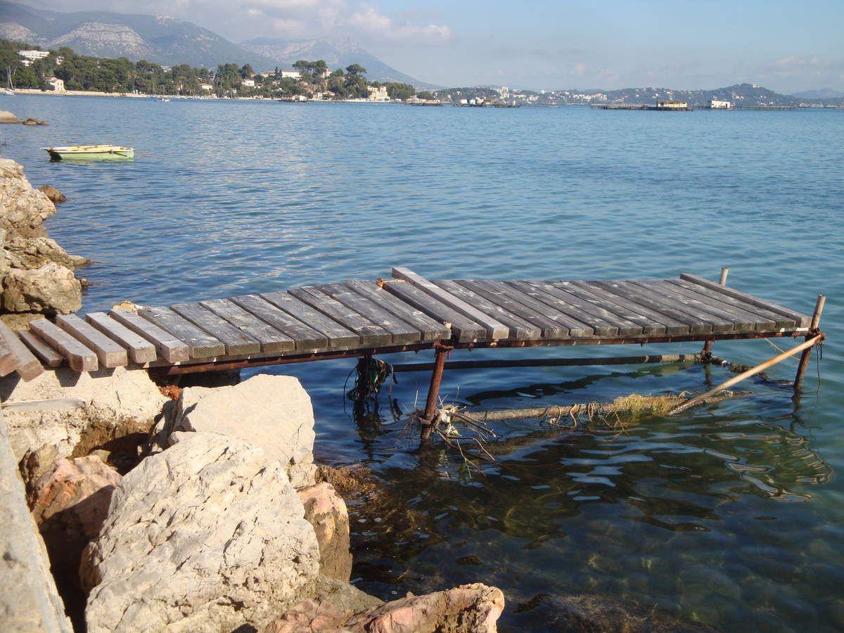 Van vw T4 california : en voyage à La Seyne sur mer, le Brusc, le Gaou