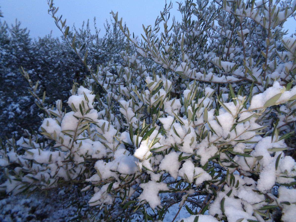 Neige à Villeneuve et la vallée de la Durance