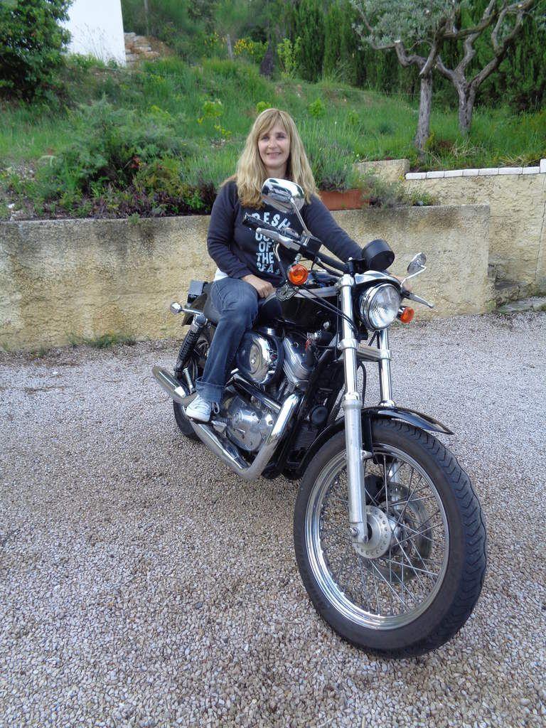 Harley Davidson 883 xl série anniversaire ( 2003 )