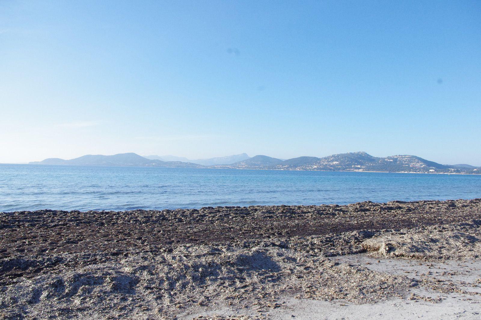 presqu'île de Giens en Burstner lyseo privilège