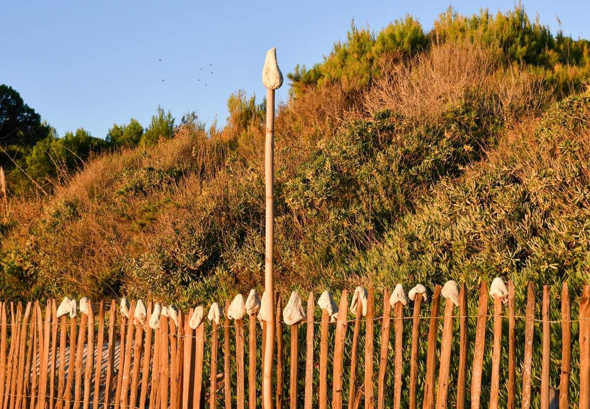 Randonnée : de la plage des Salins au Port.