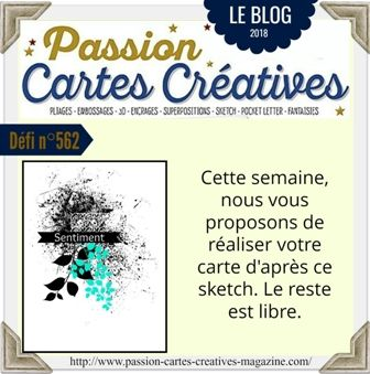 le défi 562 de Passion Cartes Créatives : ma participation