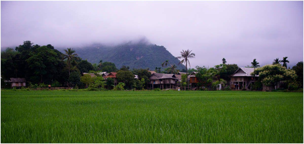 2011 Vietnam paysages