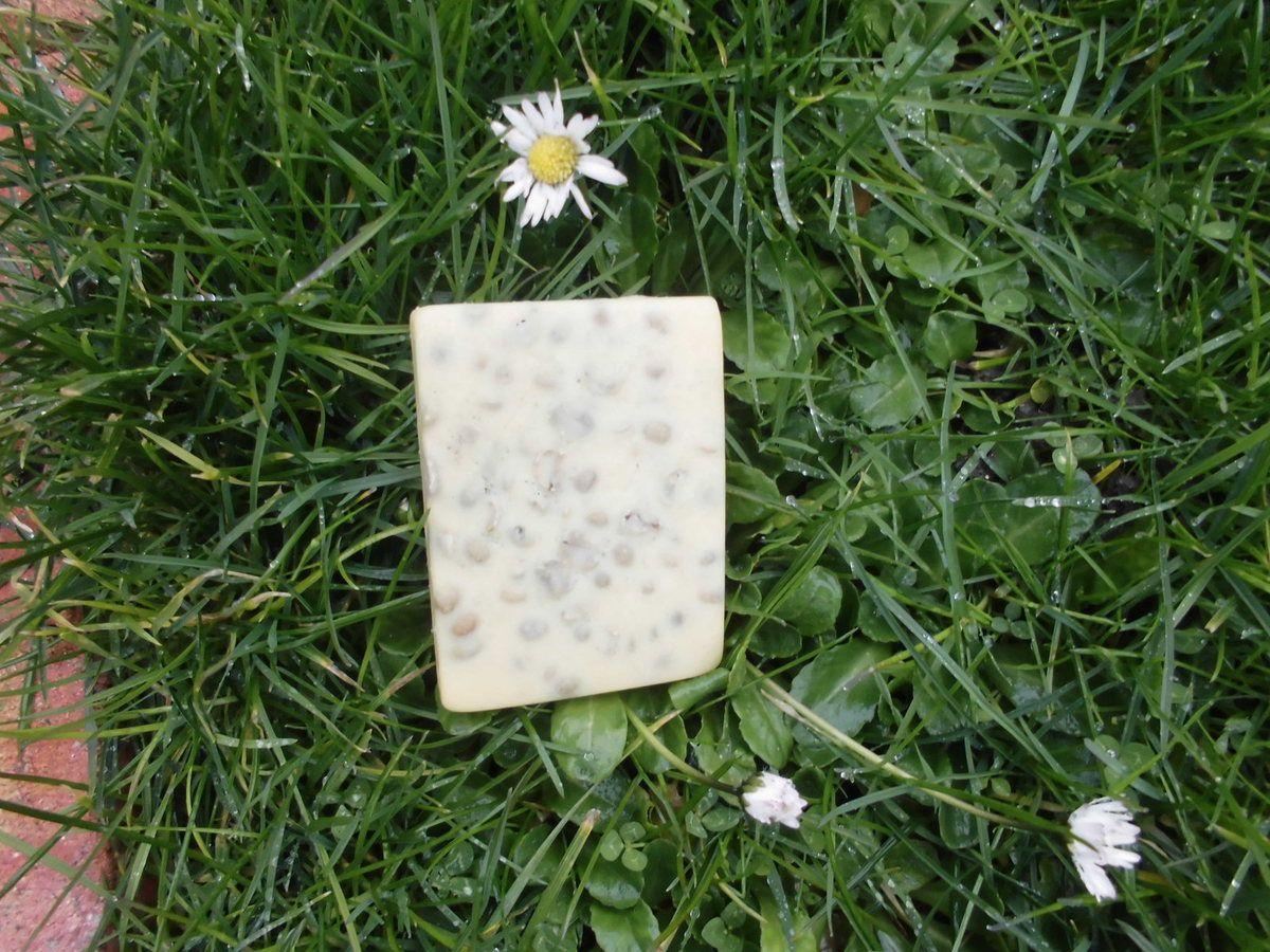 Dossier minceur 3 : Barre de massage aux actifs de plantes. Convient vegans