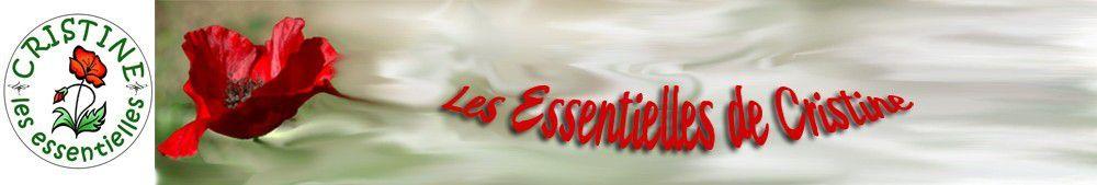 Le but des Essentielles de cristine : le plus prêt de la base !!