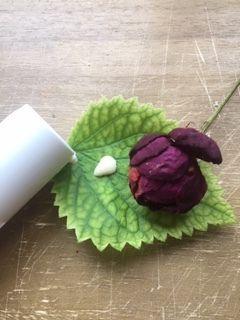 Lait crème apaisant sans rinçage pour peaux irritées, au miel et à la rose