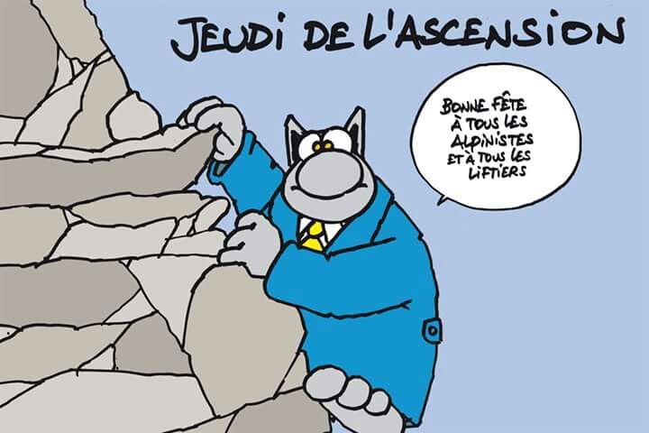 Jeudi de l'Ascension: Le Chat de Geluck