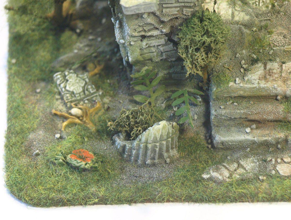 Série complète de décors de Jungle et tour de mage Ob_c6f8fc_1514833660-p1015082