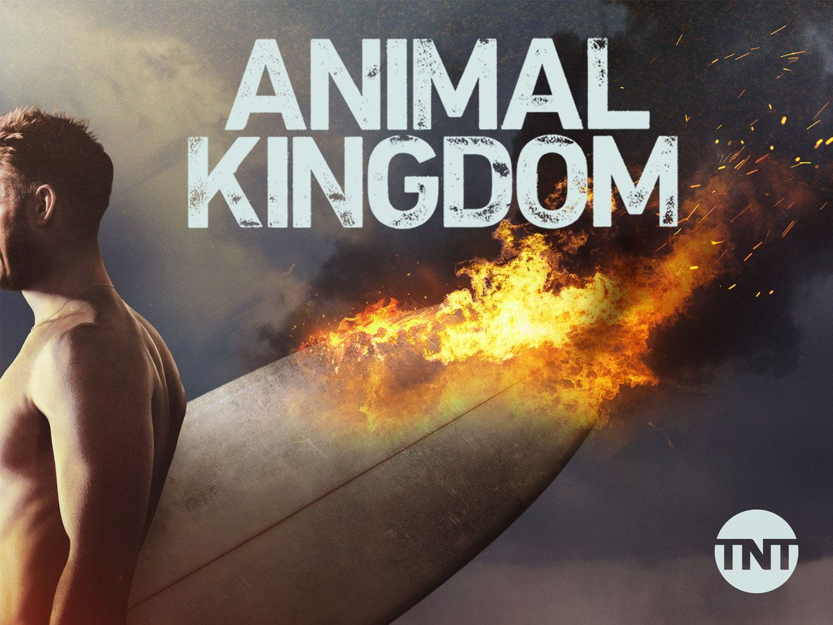 Animal Kingdom (US) (Saison 2, 13 épisodes) : crimes et châtiments