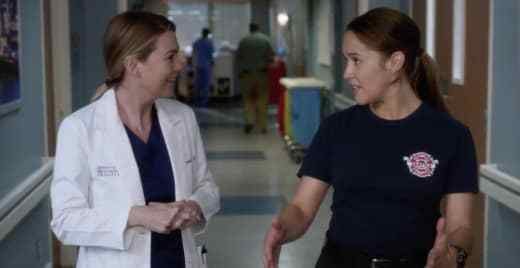 Critiques Séries : Grey's Anatomy. Saison 14. Episode 13.