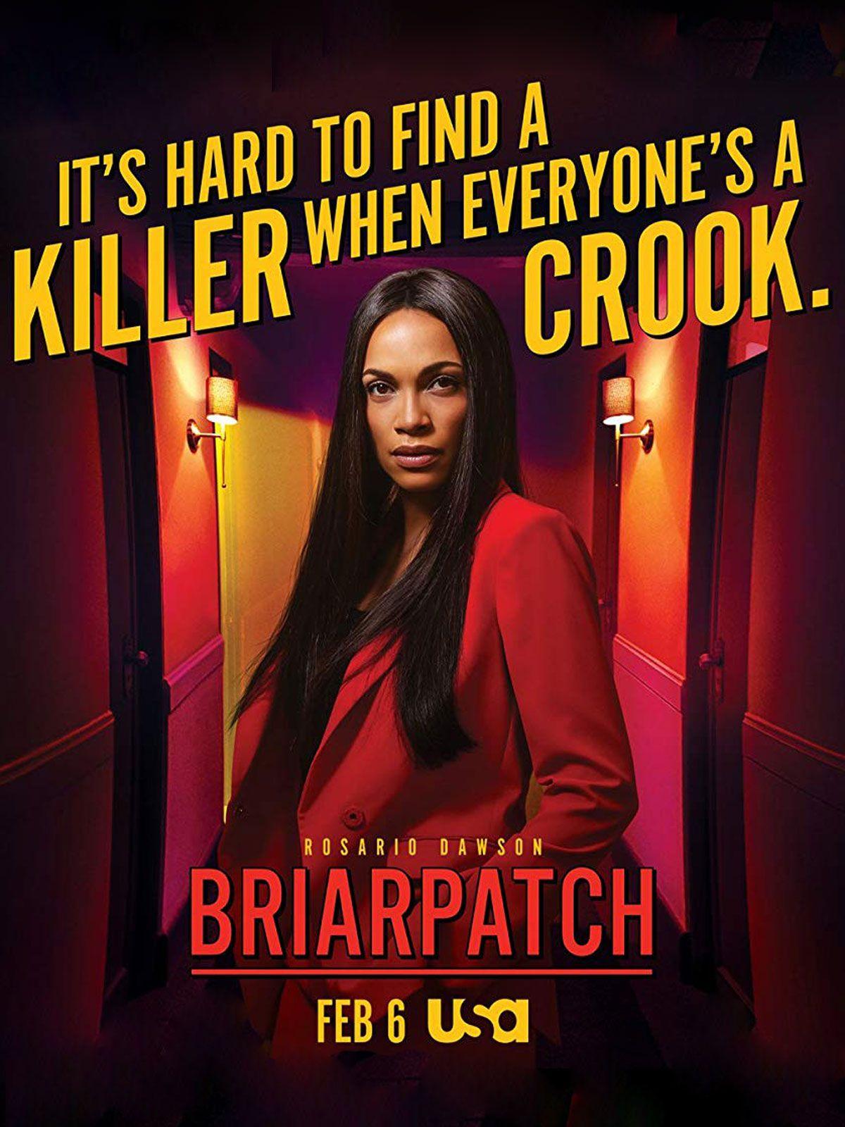 Briarpatch (Saison 1, 10 épisodes) : pulp fiction au Texas