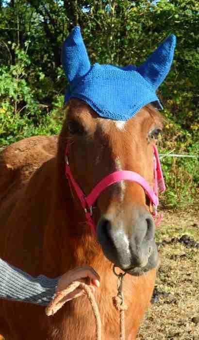 Bonnet cheval de Maryline