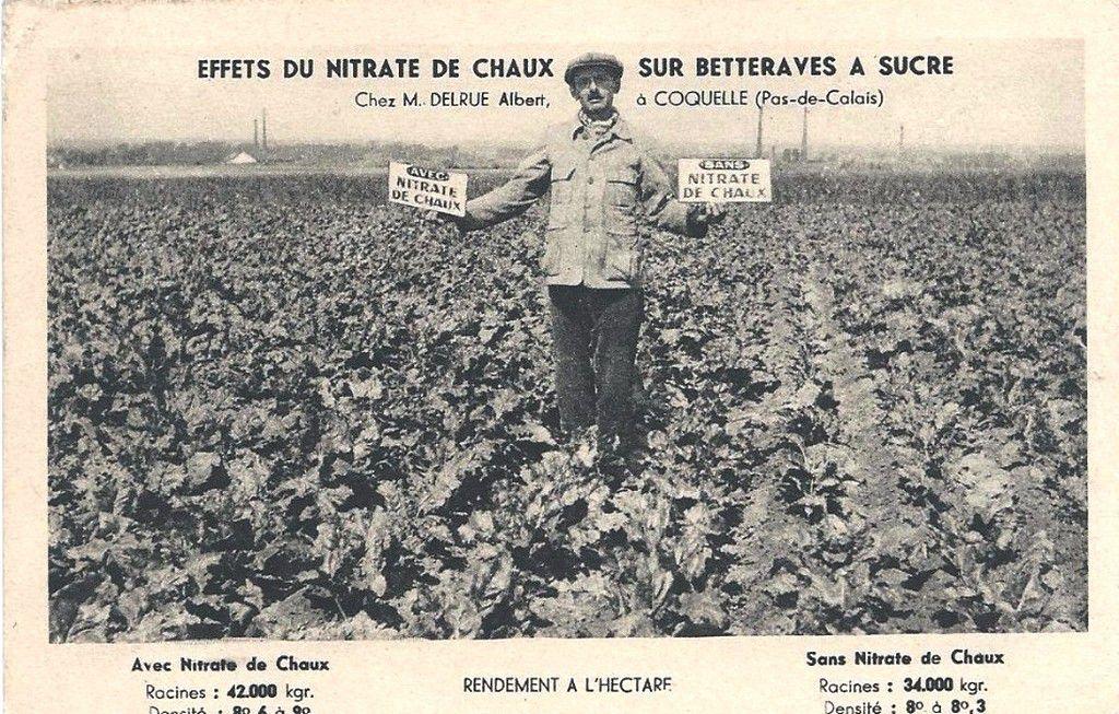 (A23) Cartes Postales Anciennes Calais Humour