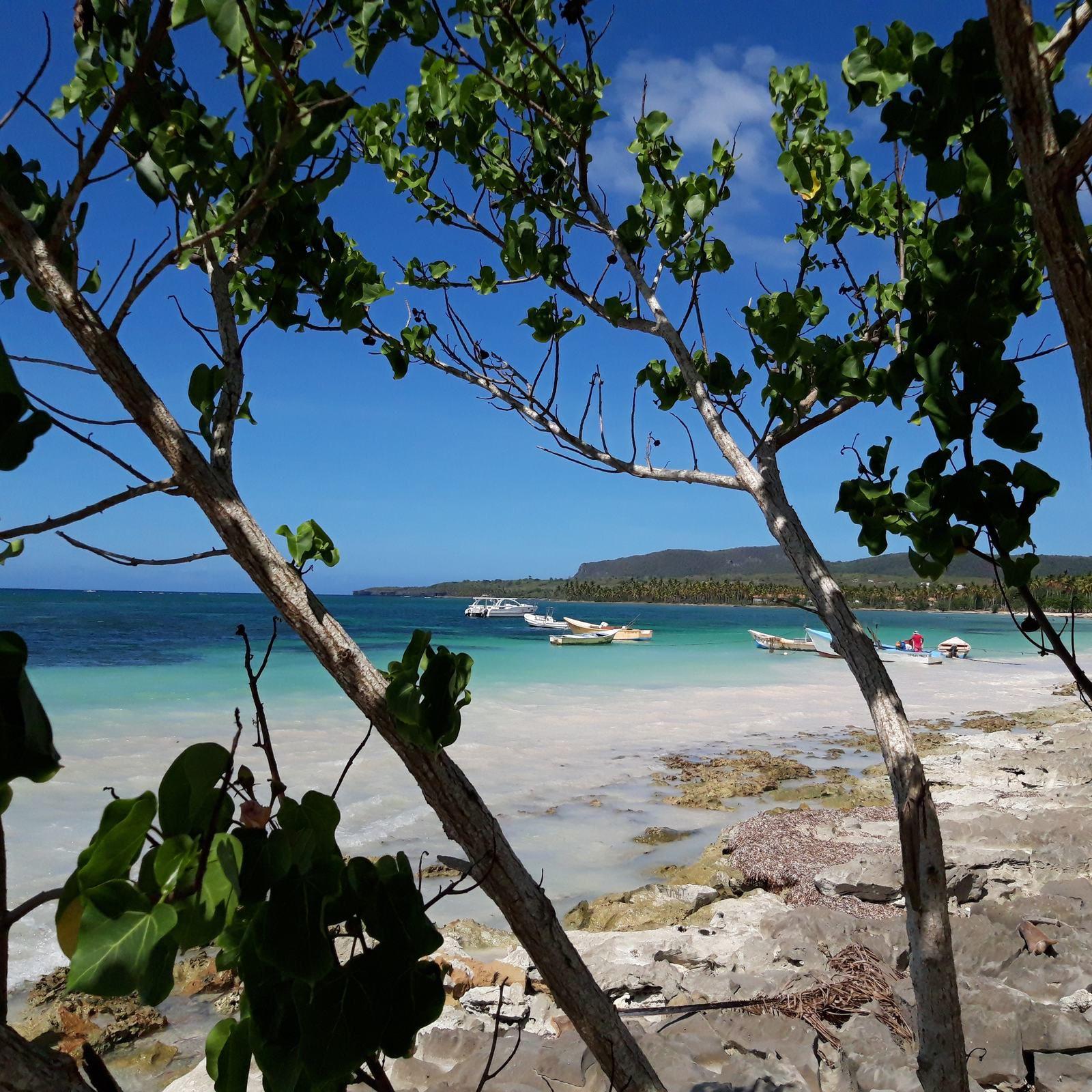 Reportage de Sept à huit sur TF1 - ces français qui ont construit leur petit coin de paradis en République Dominicaine