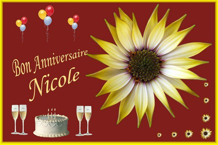 Bon Anniversaire Nicole 3 Auxfilsdarts Over Blog Com