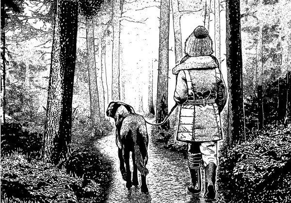 CI-489 Winter Walkies, une sublime scène en forêt