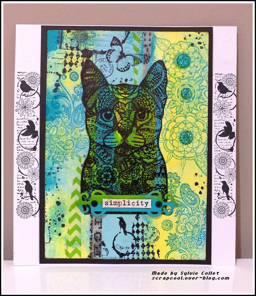 CARTES CHAT