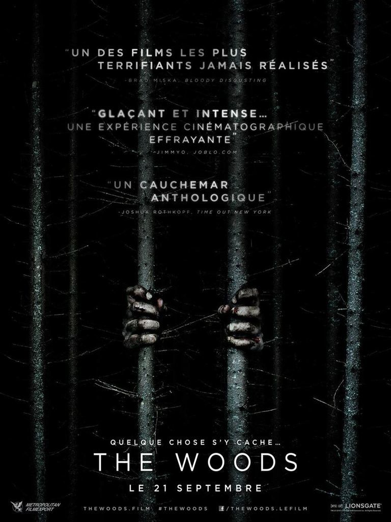 """BLAIR WITCH"", BANDE ANNONCE DE LA SUITE/REMAKE (#SDCC2016)"