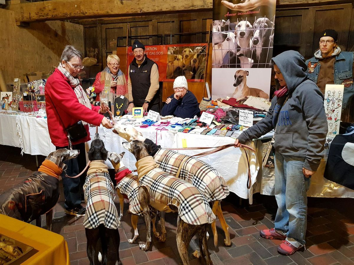 Presse Dives sur Mer calvados Anim'Art 2018 association  sos chiens galgos