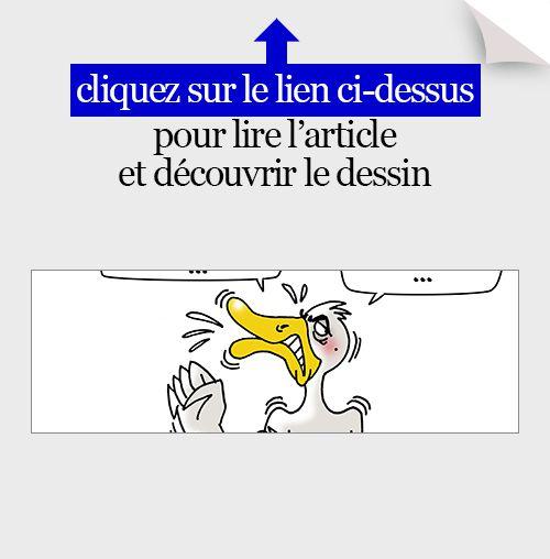 actualité en dessins,JM,grippe aviaire,abattage,canards,sud-ouest,foie gras
