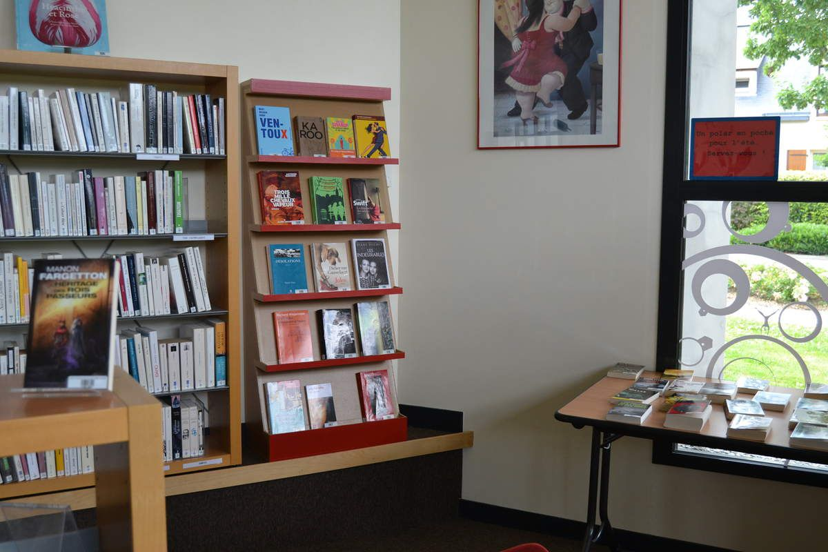 Meuble en carton présentation de livres