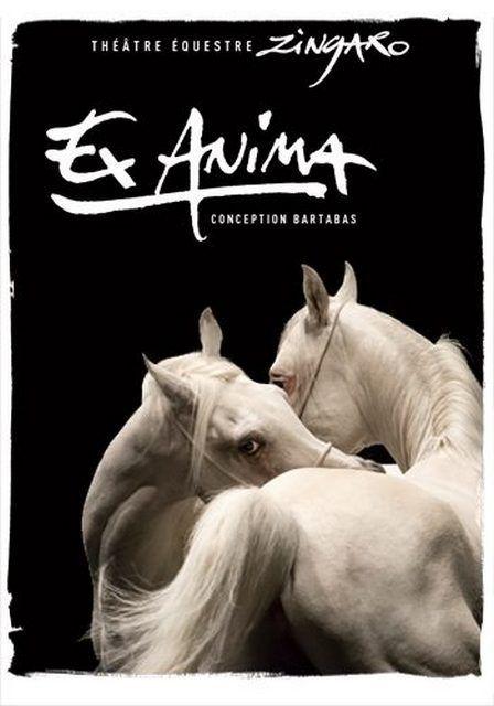 ZINGARO présente EX-ANIMA