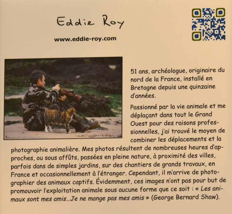 Eddie Roy se présente.
