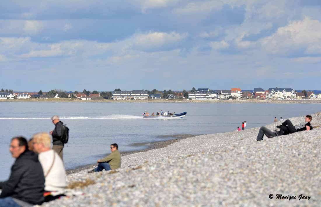 Moments de détente face à la mer. On voit le zodiac qui revient d'aller voir les phoques, un peu plus loin.