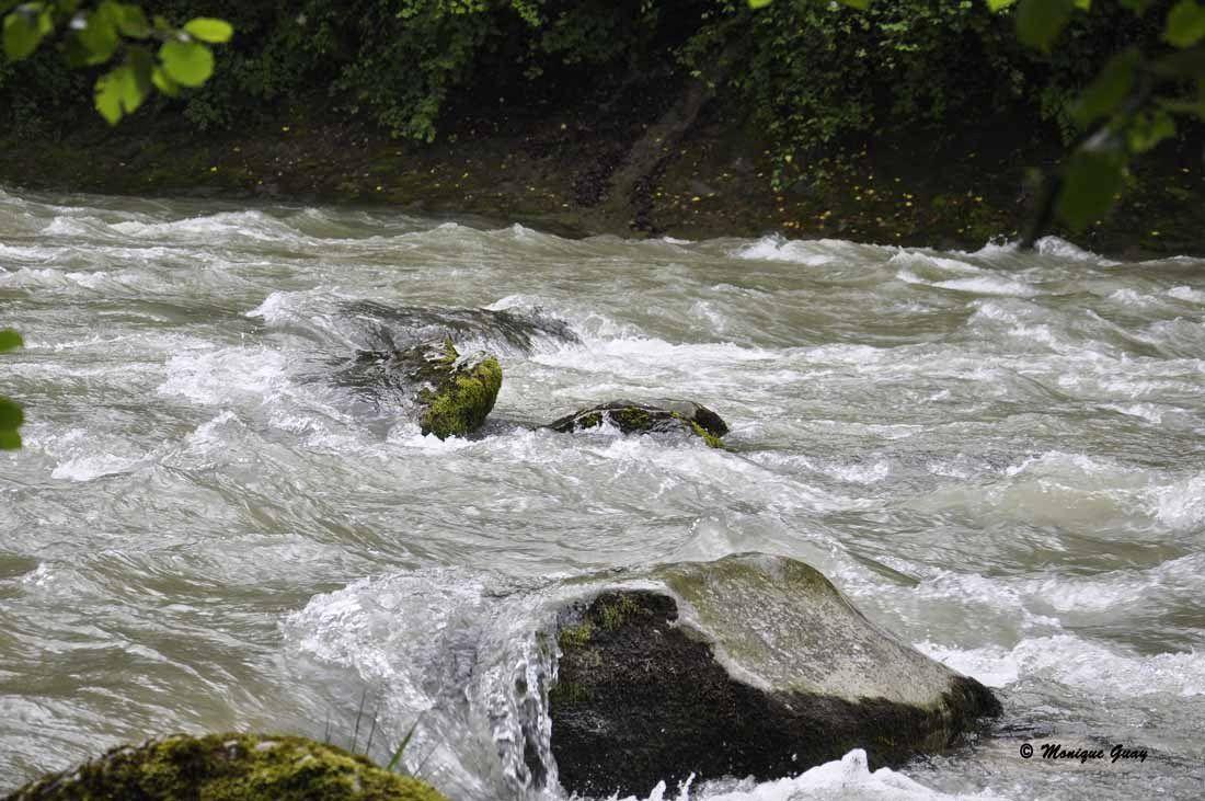 L'eau faisait un bruit infernal de torrent de montagne.