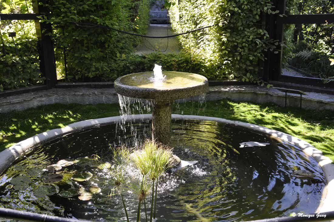 Une jolie fontaine très apaisante.